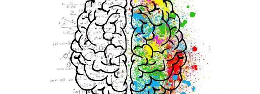 Brain - Soft Skills